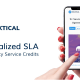DSLA wants to become the service credit of the web 3.0
