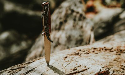 Bitcoin's 50%, Matic's 74% dump, & Litecoin's 50% pump: Traders take on catching the falling knife
