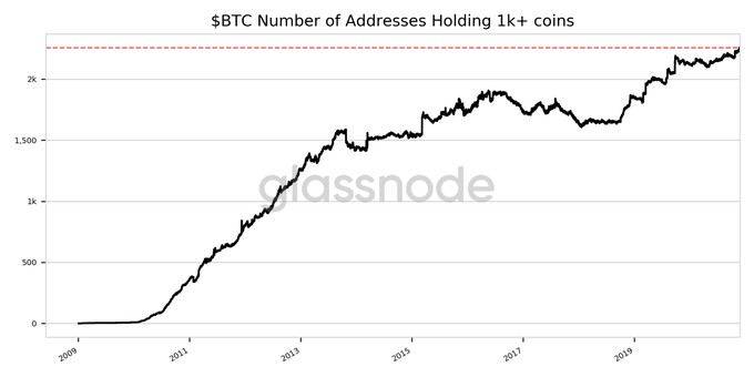 Number of Addresses Holding 1k+ coins hit ATH of 2257